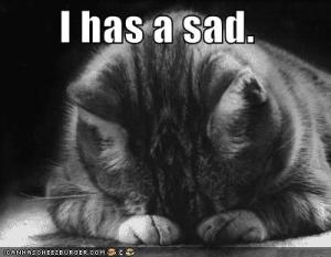 funny-pictures-sad-cat-blackandwhite